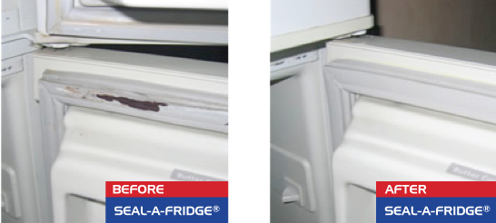cracked-fridge-seals
